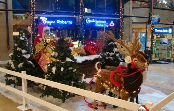 Kerstslee set (1)